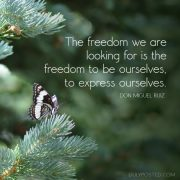 dulyposted_freedom-express_quote-610x610